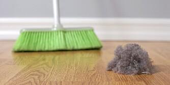 LUMSKE HYBELKANINER: Husstøv er ikke så uskyldig som mange tror. 60 prosent av det kommer utenifra og kan inneholde giftige stoffer.