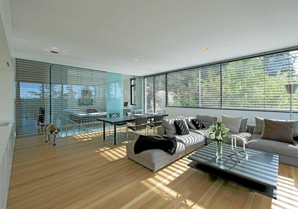 SOLSKJERMING: Med panoramavinduene som strekker seg over hele husets bredde, var det viktig å ha muligheten til å stenge lyset ut, og det er gjort med bruk av store persienner.