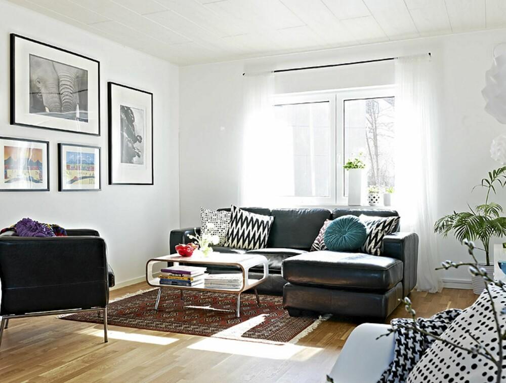 En bildevegg gjør seg i stuen. Men alle bildene behøver slett ikke å være i samme stil. Putene i sofaen er også en kjapp måte å bringe farge inn i hjemmet ditt på, og du kan lett skifte dem ut, eller bytte dem med puter fra et annet rom.