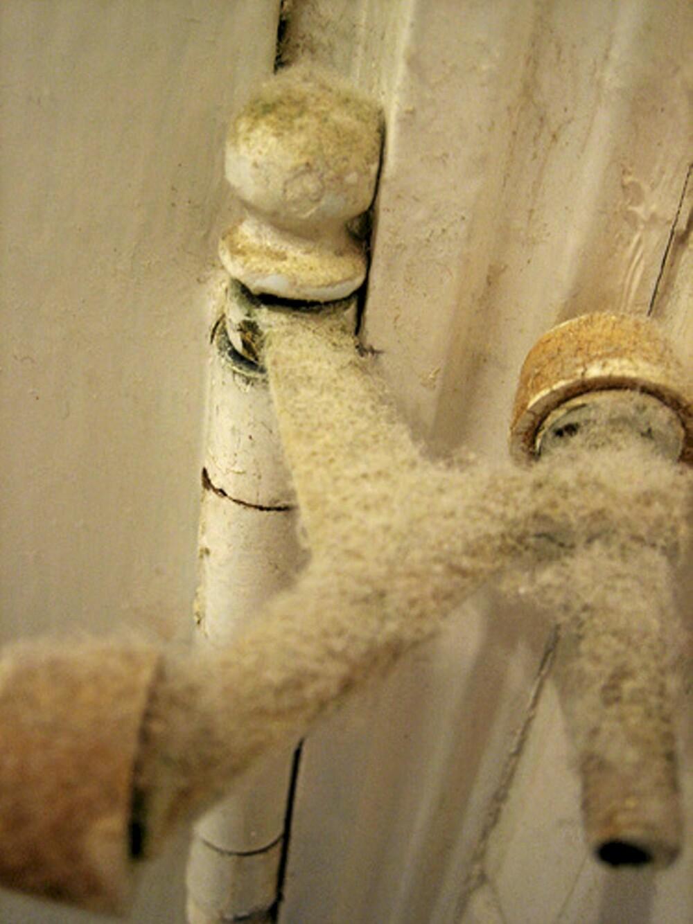 TYKT LAG: Støv kan ligge i overraskende tykke lag om det ikke blir tørket bort på mange år.