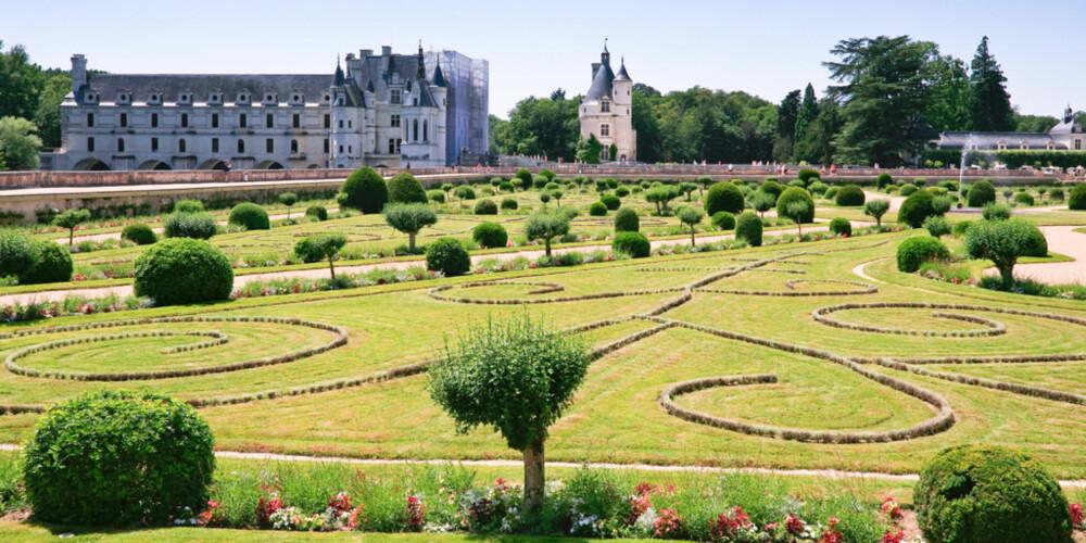 I MINDRE FORMAT: Selv om hagen din ikke er så stor som denne, kan det være gull verdt å få litt ekspertråd.
