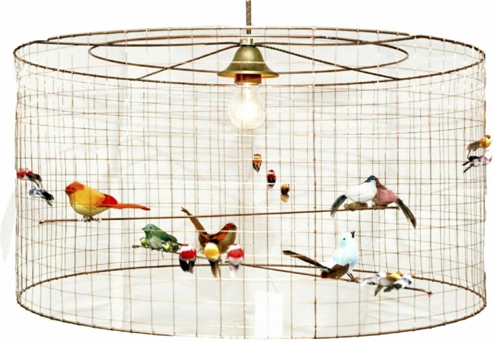 LAMPEBUR. Fargerike fugler i bur, heldigvis er de ikke ekte. Lampen er laget av kobbertråd, eske.as