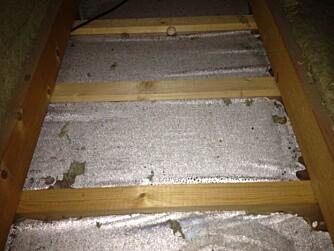 SOPP OG RÅTE: Dampbrems/fuktsperre i etasjeskiller lagt på feil side i konstruksjonen. Konsekvens: Kondens oppstår og forårsaker mugg, sopp og råte som i sin tur igjen medfører dårlig inneklima.