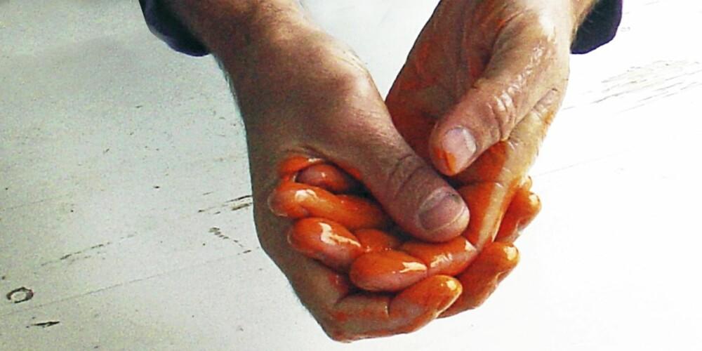 MATOLJE MOT MALING: Bruk matolje når du fjerner malingen på hendene. Gjør som når du vasker deg. Du kan bruke alle former for matolje.