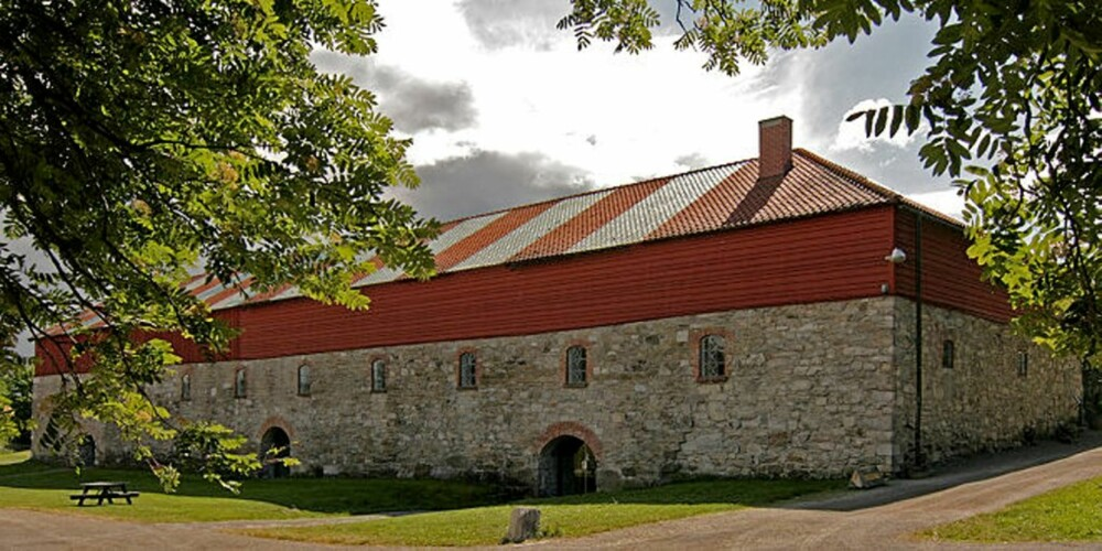 Storhamarlåven/Domkirkeodden i Hamar