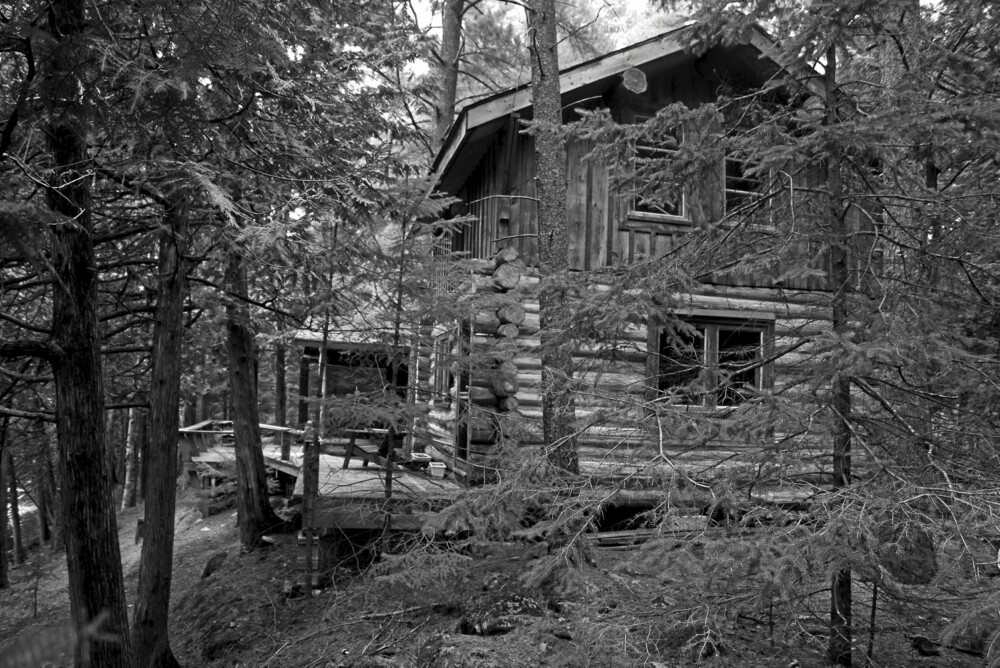 Den store drømmen: Cameron dro ut i skogen og bygde seg en tømmerhytte med øks og noen andre enkle redskaper.