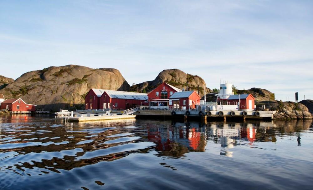 OLJETANKEN SKIMTES TIL HØYRE. Fritanken var det eneste som sto igjen etter verftet i Ny-Hellesund.