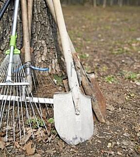 HAGEREDSKAPER. Sats på riktige hageredskaper slik at arbeidet blir lettere. Vi gir deg de viktigste rådene. Se egen ramme.