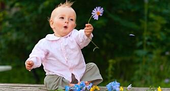 NAVN FRA NATUREN: Hva med å velge et navn fra naturen. Et blomsternavn kan passe bra på en liten prinsesse.