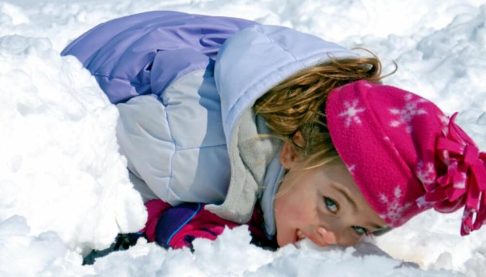 """NATURENS SPISKAMMER: Det kan være vanskelig å styre seg for fristelsen til å spise all den naurlige """"melisen"""" som omgir oss om vinteren."""