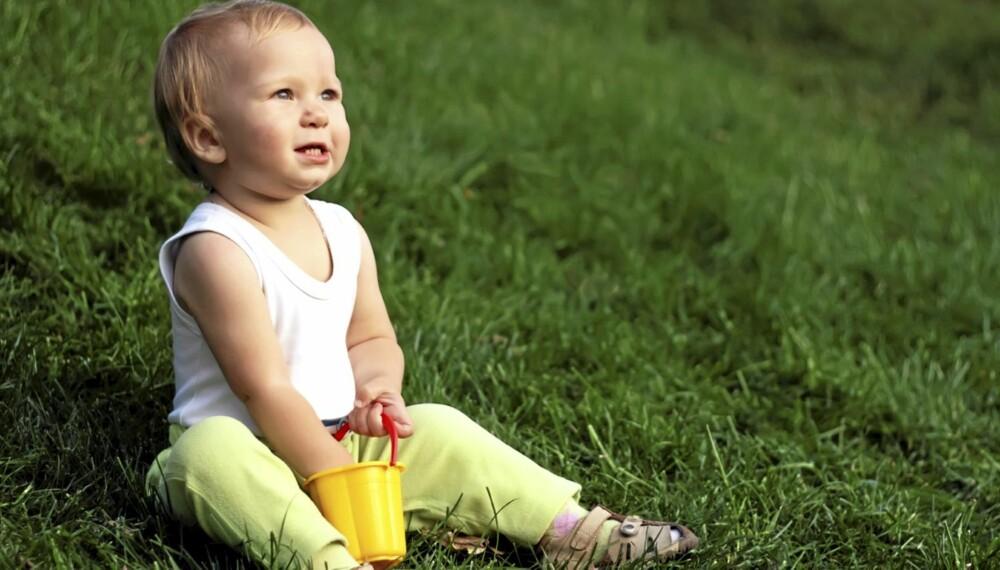 Barn smittes oftere av flåttbårne sykdommer enn voksne.