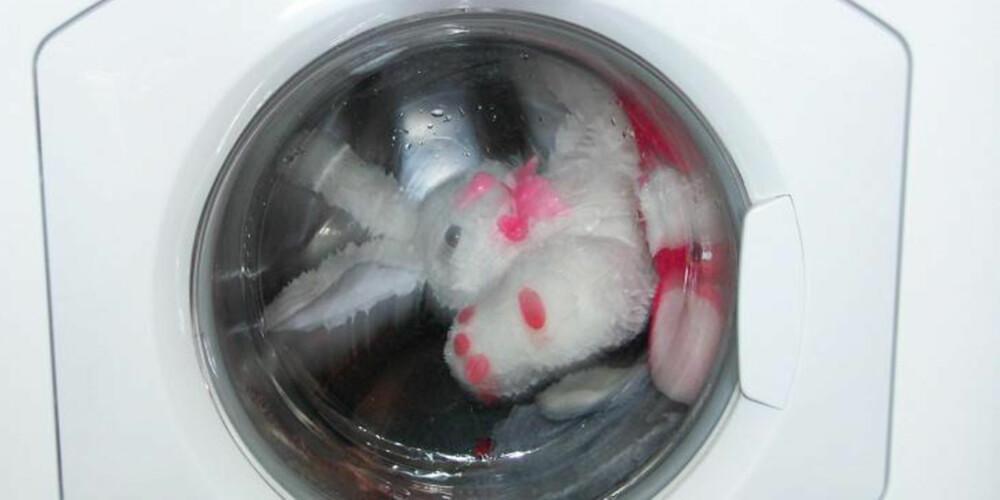 REN OG PEN: Jo da, det går som regel helt fint å kjøre kosekaniner en runde i vaskemaskinen.
