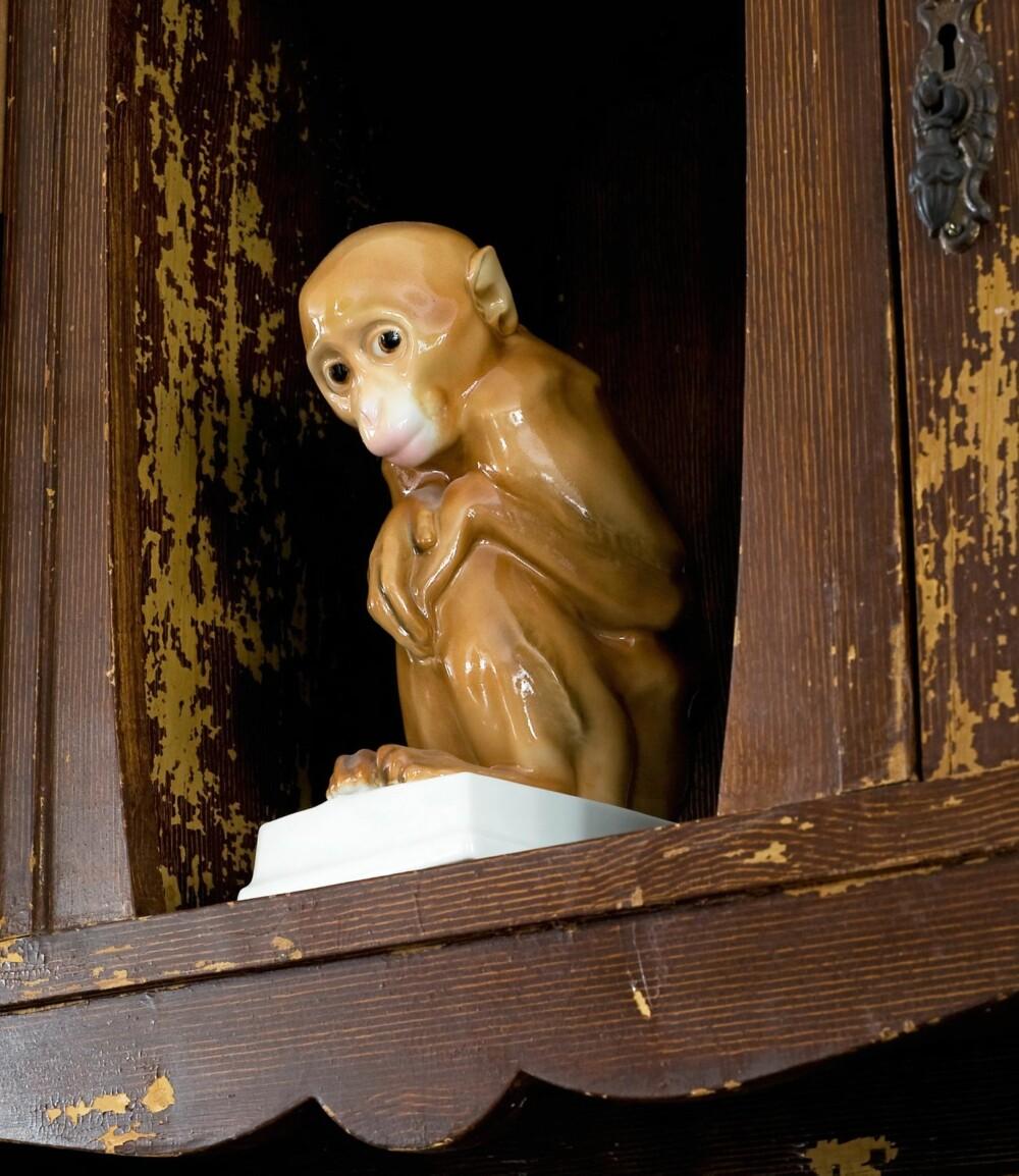 FORSIKTIG SJARMØR: Den uttrykksfulle porselensapen sjarmerte seg inn i Helgas koffert da hun sist var i Riga.