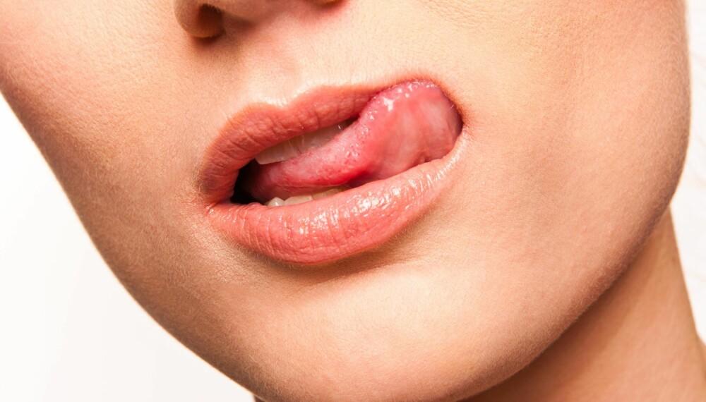 LYS TUNGE: En frisk tunge skal være fuktig, lys rosa og ha en jevn fordeling av papiller på overflaten.