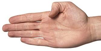 DIGIT RATIO: Forholdet mellom pekefinger og ringfinger avgjør digit ratio.