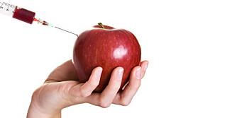 BLODTYPEDIETTEN: Blodtypen din bestemmer hva slags matvarer du kan spise.