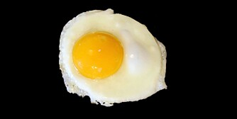 A Sunnyside up egg frying isolated on black