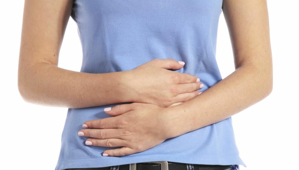TARMFLORA: Det blir stadig større fokus på tarmbakterienes betydning for helsen vår
