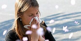 ALLERGI: Mild vinter og tidlig vår høres deilig ut for de fleste av oss, men ikke for dem som reagerer på or- og hasselpollen.