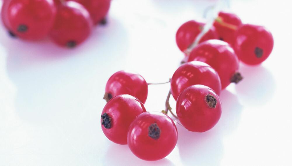 RIPS: Bær er også inkludert i anbefalingen om fem om dagen. Spis håndfull rips i stedet for et eple. Visste du at bær inneholder med antioksidanter enn frukt?