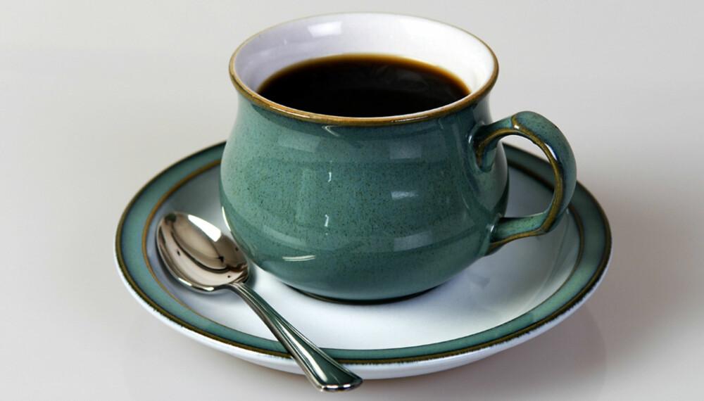 EKSKLUSIV: Bønnene som produseres av palmesivetten gir en kaffe som er svært ettertraktet.