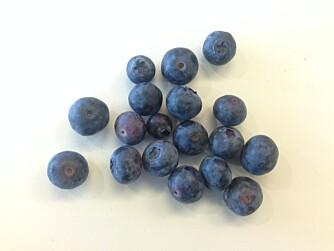EKTE BLÅBÆR?: Har du også lurt på hvorfor blåbærene er hvite inni? FOTO: Jenny Mina Rødahl