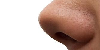 girl's nose. macro