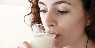MANGE NÆRINGSSTOFFER: Kumelk gir mange deg mange næringsstoffer, men heldigvis finnes det gode alternativer for dem som trenger det.