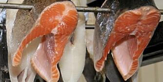 A-VITAMIN: Finnes i fet fisk.