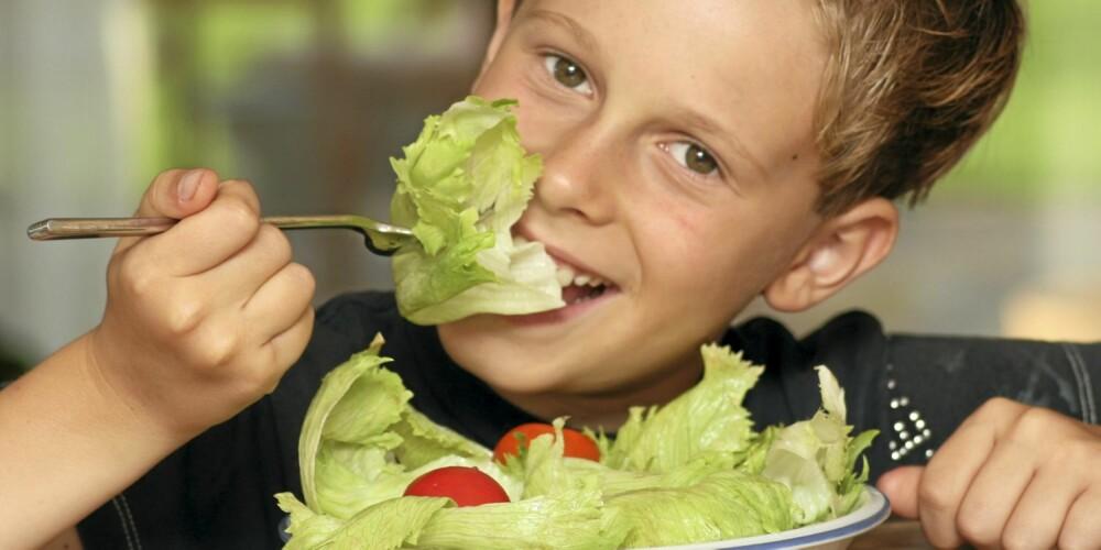 INGEN ILLUSJON: Dersom han hadde spist et mirakelbær før han kom på fotoshoot denne dagen, ville grønnsakene gått ned på høykant - han hadde sluppet å late som om det var godt.