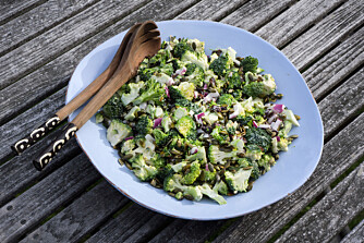 SUPERGRØNNSAKER: Det er mye god helse i de rimeligste grønnsakene våre. Brokkoli, løk og purre er full av helsebringende antioksidanter som du får smakfullt pakket sammen med kostfiber, vitaminer og mineraler. FOTO: Pål Rødahl