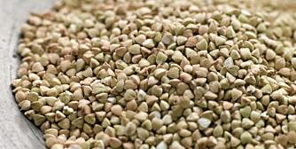 BOKHVETE: Navnet skyldes at det lille frøet ligner en bøkenøtt, mens planten brukes som hvete.