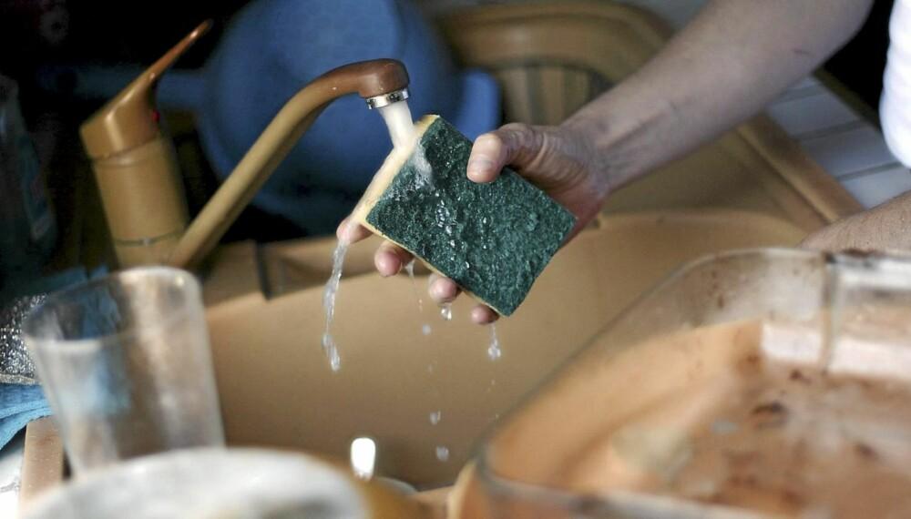 SKITTENT: Klut/svamp, oppvaskbørste, tappekran og brødfjøl er blant bakteriebombene på kjøkkenet.
