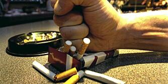 DET HJELPER Å STUMPE: Eks-røykere er like sunne som ikke-røykere.