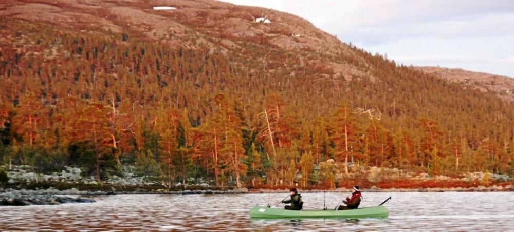 KANO: Femund og Rogen er som skapt for kano, og kano er en fin fiskefarkost.