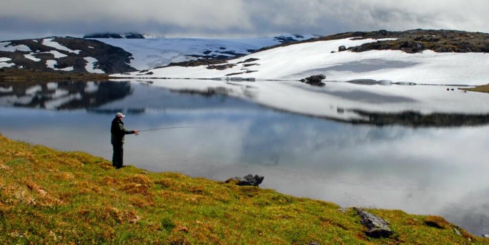 TUSSEVATNET: Dette vannet fikk vi tips om fra lokalkjent ekspertise. Dette er bare ett av mange mindre vann på Sognefjell, alle med fisk i.