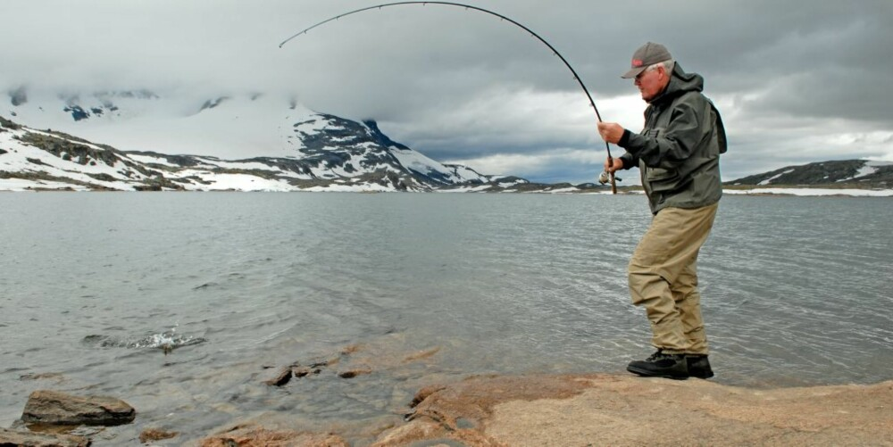 PRESTESTEINSVATNET: Reidar Korsen i sving med nok en kvalitetsørret fra Prestesteinsvatnet på Sognefjellet.