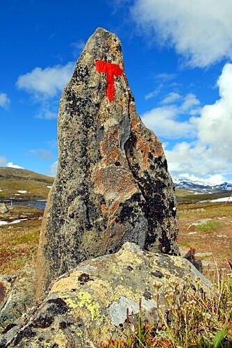 GODT MERKET: Ved å følge Den Norske Turistforenings varder kommer du enkelt til flere av vannene.