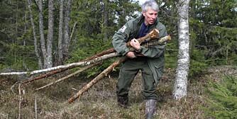 Gapahuk 1. Til bygging av gapahuk trenger du en del staure eller raier. Bruk tørrtrær