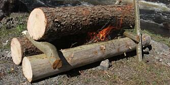 BRENNER LENGE: Stokkvarmen eller nyingen består av to eller tre ganske lange tørrstokker. Disse støttes opp med ferskt løvtrevirke. En stokkvarme brenner i timevis og brukes ofte foran gapahuken.