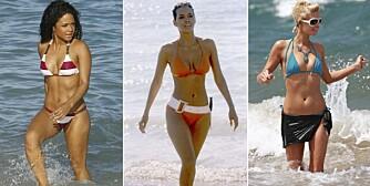DRØMMEKROPP: Har en av disse din drømmekropp? Christina Milian, Halle Berry og Paris Hilton kan med stolthet vise seg i bikini