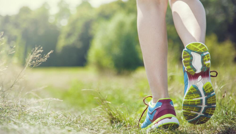 MORGENFUGL: Trening om morgenen gir en god følelse for hele resten av dagen. Men kanskje ikke maksimalt treningsutbytte.