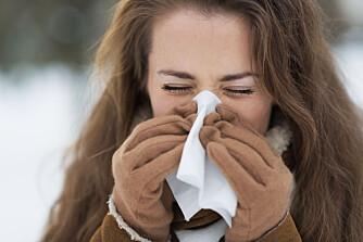 LIKE SYMPTOMER: Det kan være vanskelig å avgjøre om du har allergi eller forkjølelse fordi symptomene ofte er like - men det finnes heldigvis forskjeller. Foto: gettyimages.com
