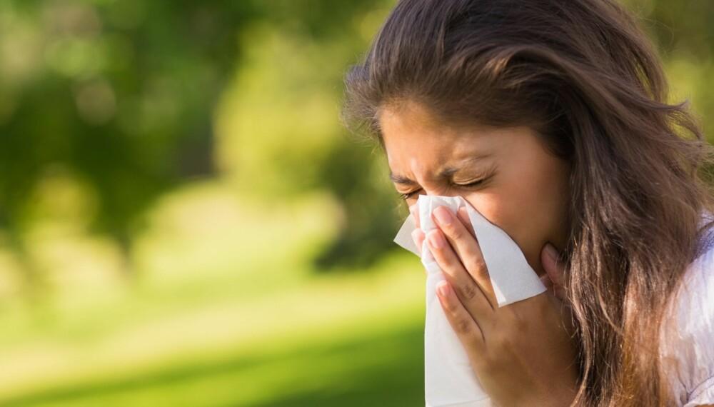 VAKSINE MOT ALLERGI: For å bli kvitt pollenallergien er vaksinering eneste mulighet.