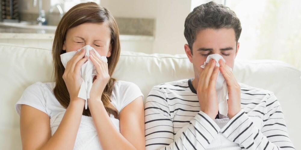 INFLUENSASYK: Influensaviruset er sjelden en velkommen gjest. Sykdommen kan være svært ubehagelig, men for de aller fleste av oss er den heldigvis ikke mer enn det.