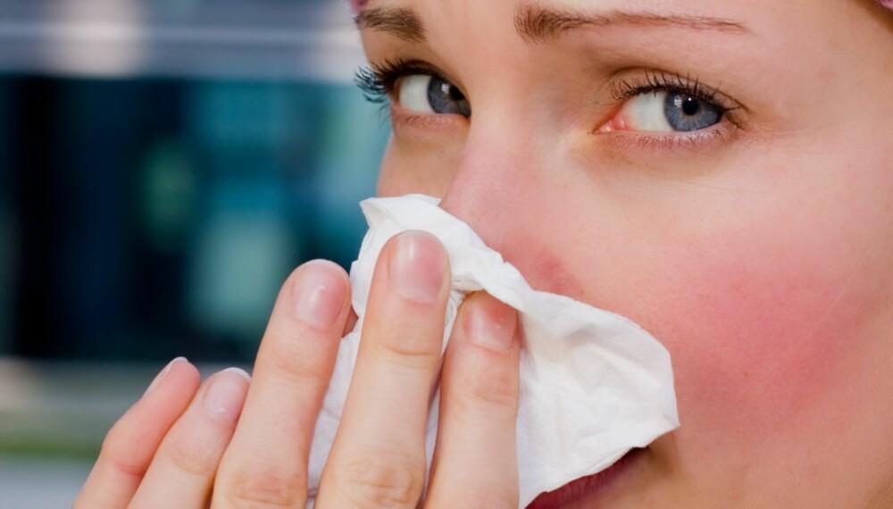 INFLUENSA: Influensaviruset finnes i luftveiene. Faren for smitte er derfor størst dersom den syke hoster eller nyser rett på en annen person.
