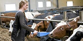 LAVRISIKO: Bønder har lavere kreftrisiko enn andre yrkesgrupper.