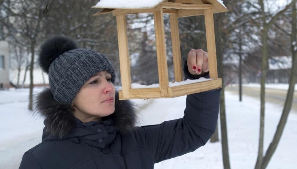 SMITTSOMT: Vær ekstra nøye med håndhygienen dersom du har lagt mat på fuglebrettet eller har vært i kontakt med ville fugler eller deres avføring.