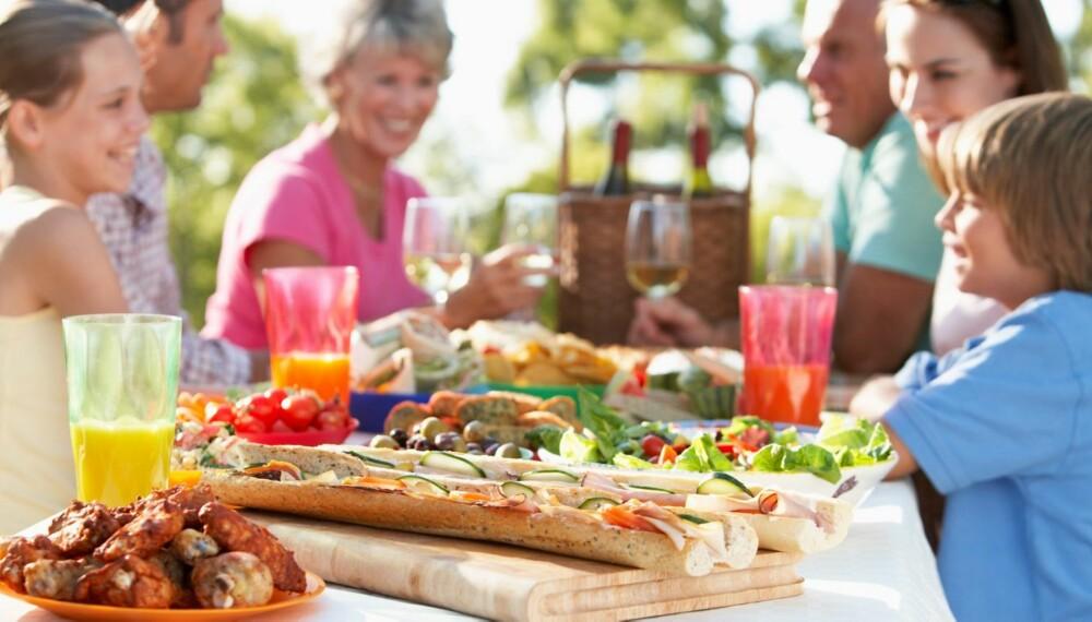 BAKTERIER: Det er ikke bare vi som trives i sol og sommervarme. Også bakteriene i maten storkoser seg.
