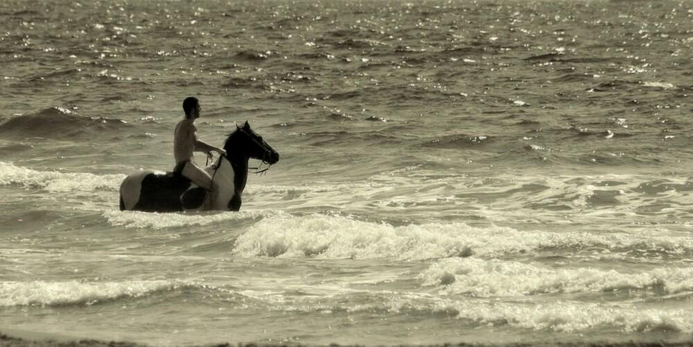 SYMBOLER: I bøker om drømmetyding er det ofte slik at en hest betyr seksualitet og vann symboliserer følelser. Men så enkelt er det ikke.